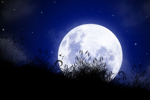 Barangolás a Holdfényben